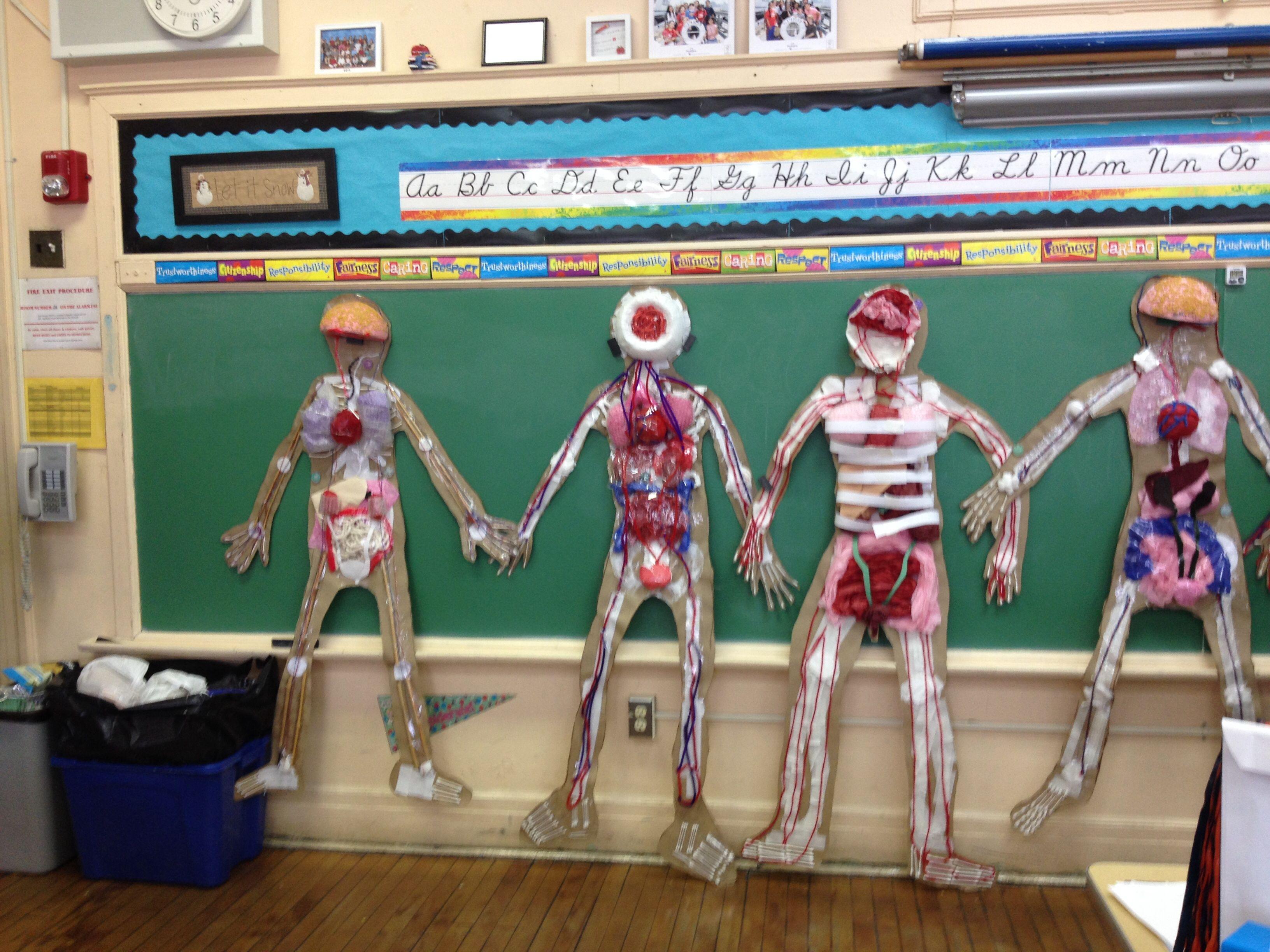 Three Dimensional Human Body Systems