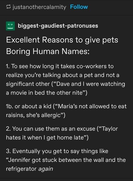 Excellent Reasons