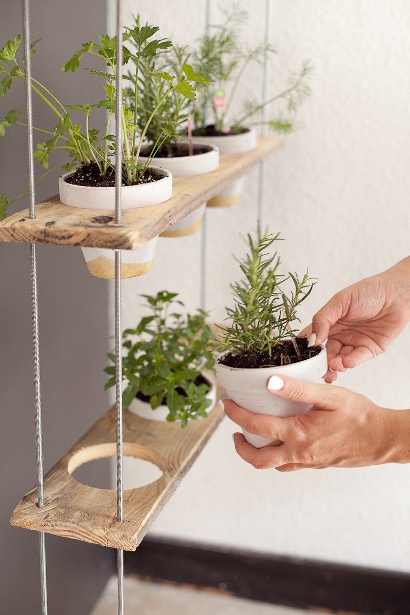 Custom Potted Hanging Herb Garden Diy Outer Spaces Pinterest