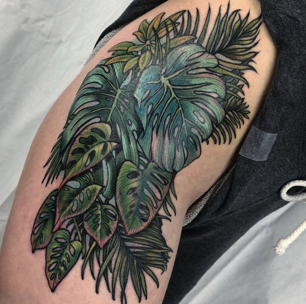"""Tropical Leaves And Foliage Tattoo By Н•µð–Šð–˜ð–˜ð–Ž Н•·ð–†ð–œð–˜ð–""""𝖓 Jessilawsontattoo Flower Hip Tattoos Tattoos Tree Thigh Tattoo Check out our tropical leaf tattoo selection for the very best in unique or custom, handmade pieces from our shops. tropical leaves and foliage tattoo by"""