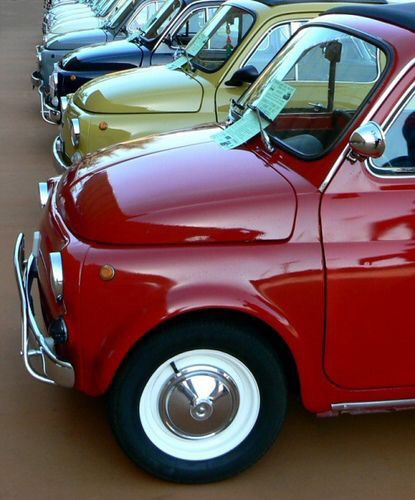 Fiat 500s All Lined Up Cute Microcar Classic Style Design
