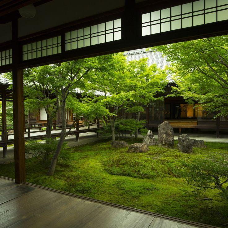 "iesuuyr: ""Kyoto, Japan | Patrick Vierthaler "" - #iesuuyr #Japan #kyoto #Patrick #Vierthaler #zengardens"
