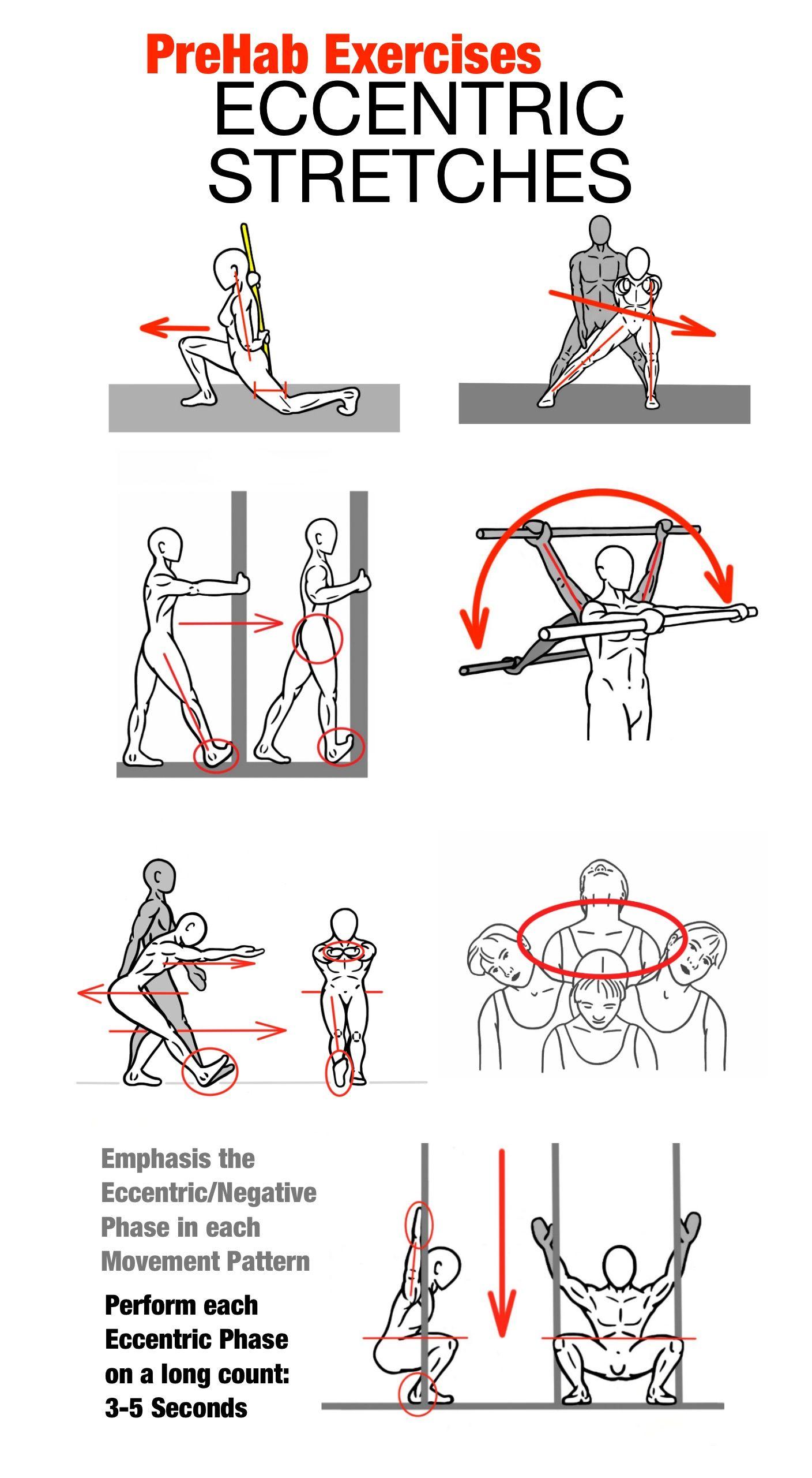 eccentric workout