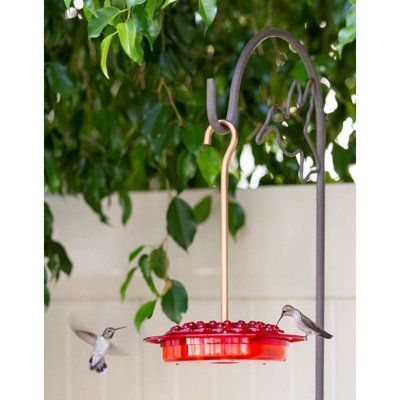Ultimate Innovations Hummingbird Feeder - 4007, Durable | Humming bird feeders, Bird feeders for ...