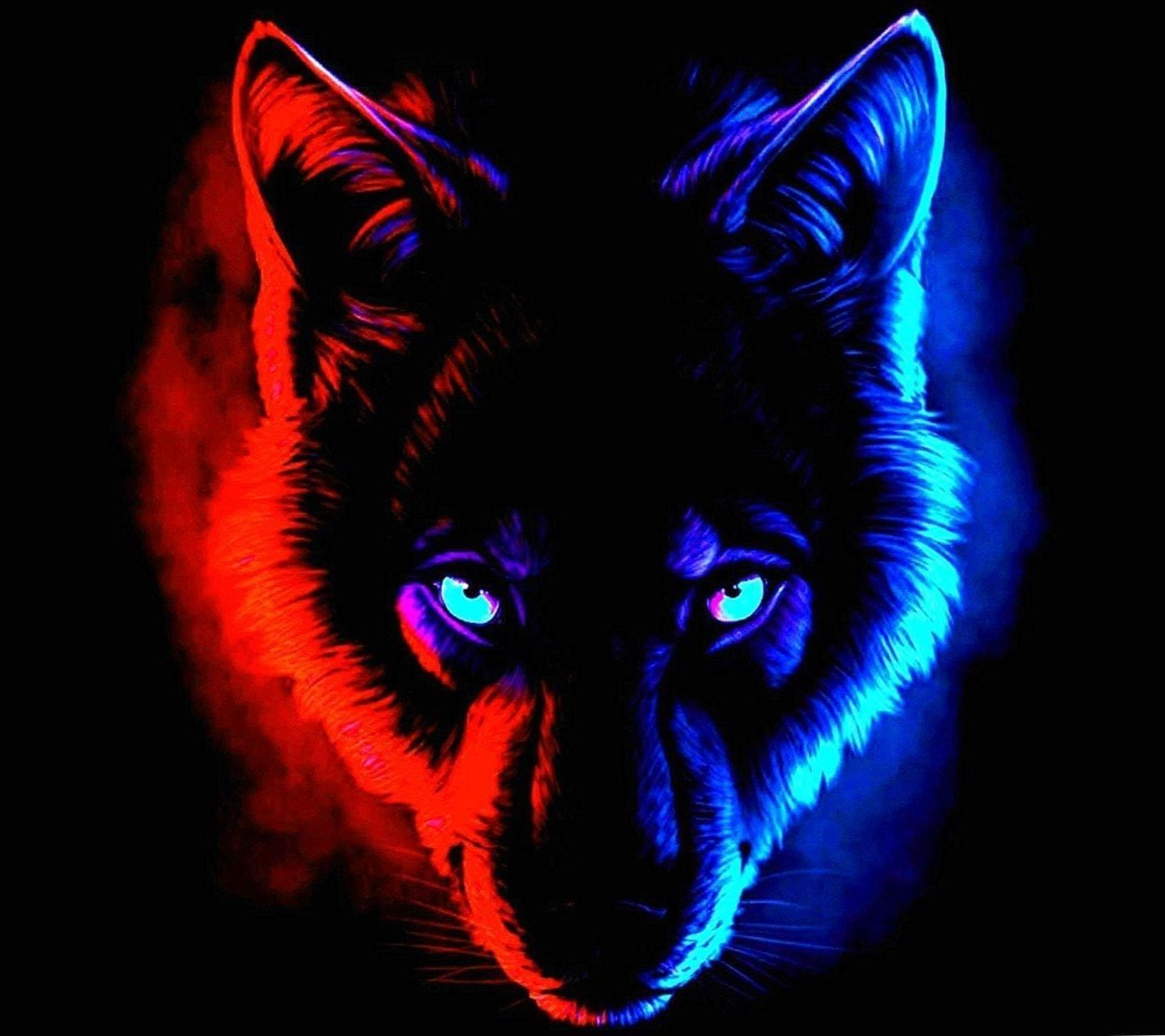 Blue And Red Wolf Wallpapers Wolf Wallpapers Pro Kartiny Zhivotnyh Kartiny Zhivopis S Volkami
