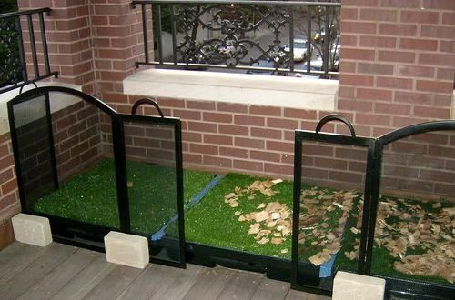 Safe & comfortable balcony ideas for your dog | Dog ...