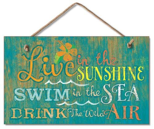 Swimming Pool Plaques Signs Wall Decor Custom Live In The Sunshine Wood Wall Sign  For My Cool New Pool Area Inspiration Design