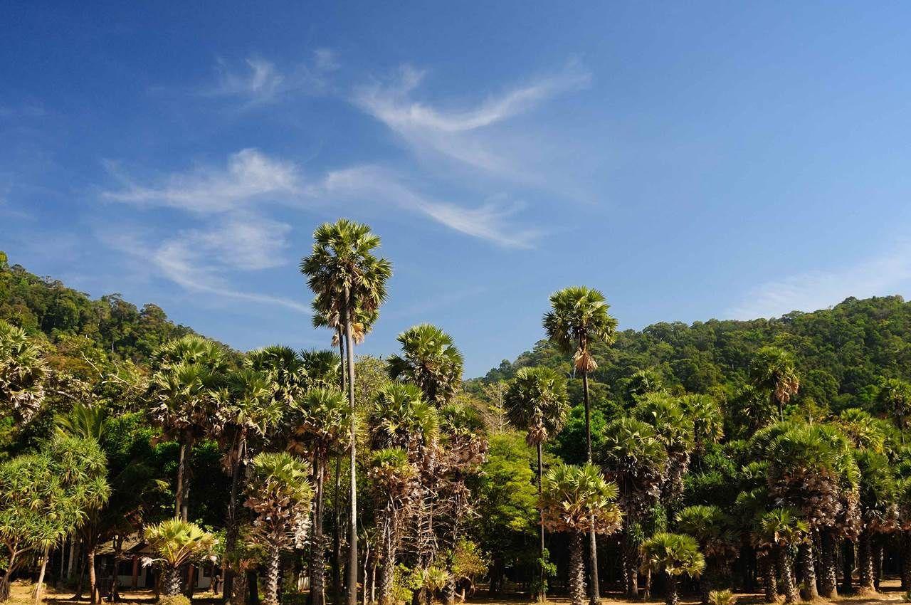 Visit Koh Lanta Thailand Island Hopping Thailand