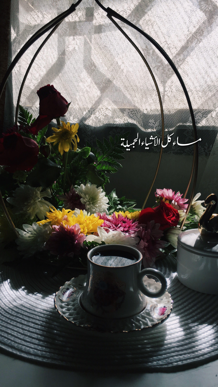 قهوة قهوتي قهوة_الصباح coffee image by iosh Flower