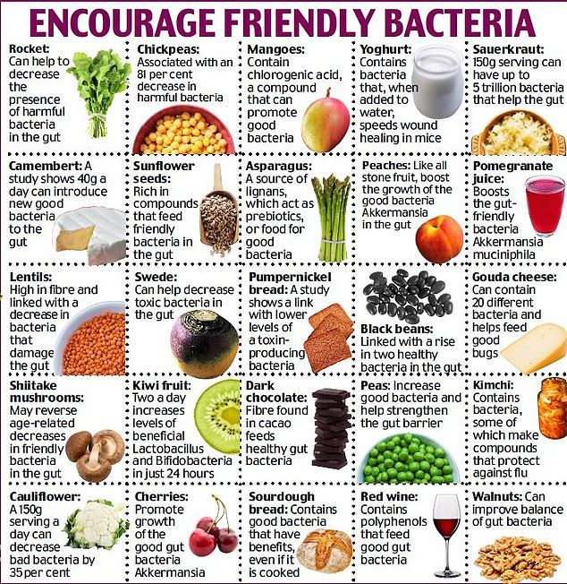 Harvard Scientist Dr William Li Reveals The Life Saving Foods Gut Health Recipes Health Food Cancer Recipes