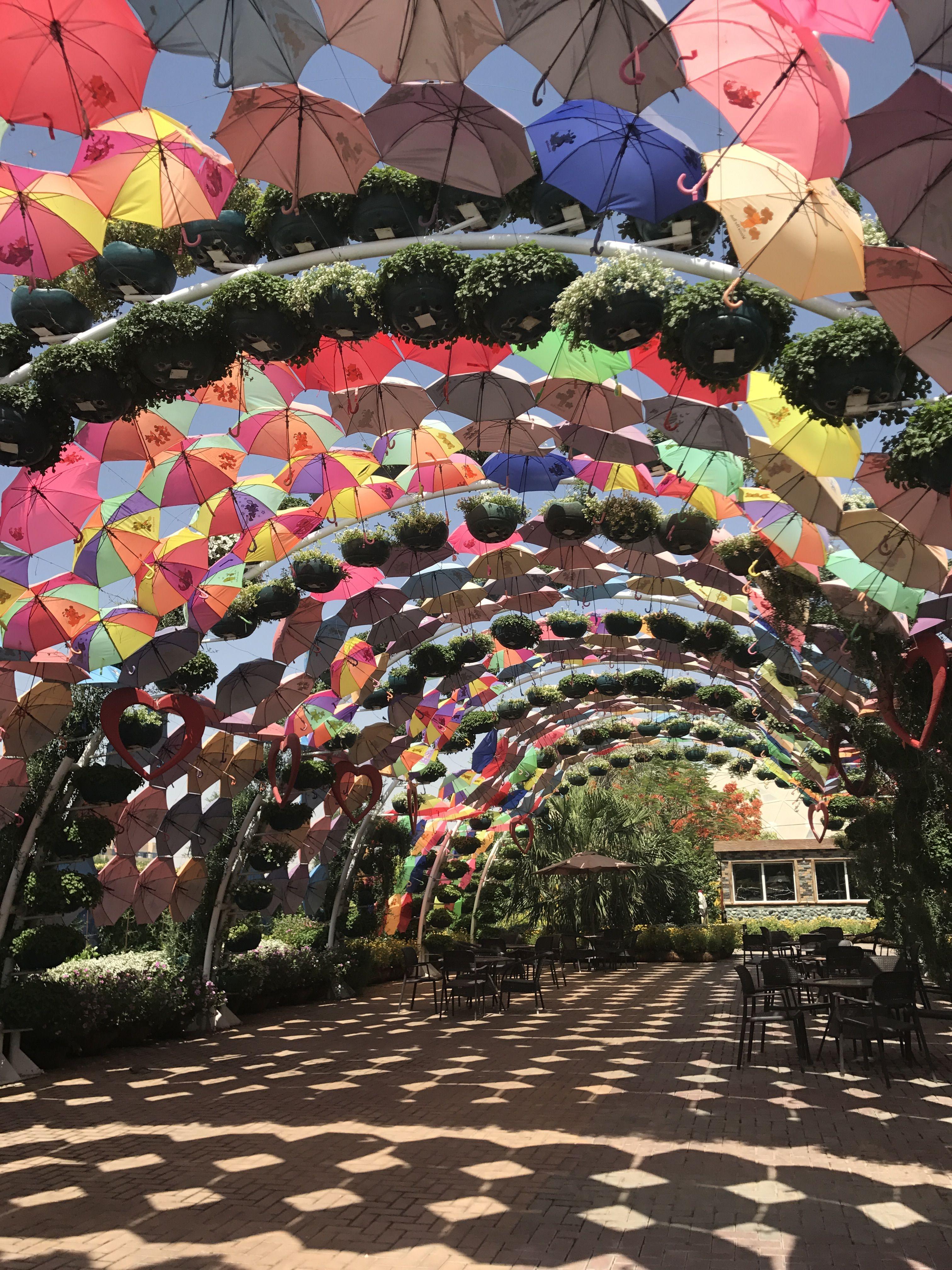Butterfly garden in Dubai Dubai garden, Garden soil