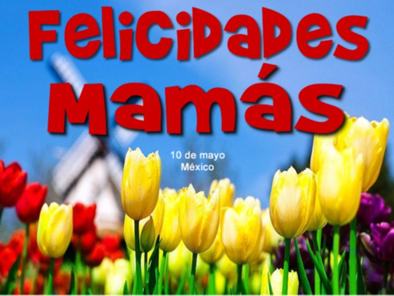 Felicidades A Todas Las Mamás En Su Día 10 De Mayo México Frases