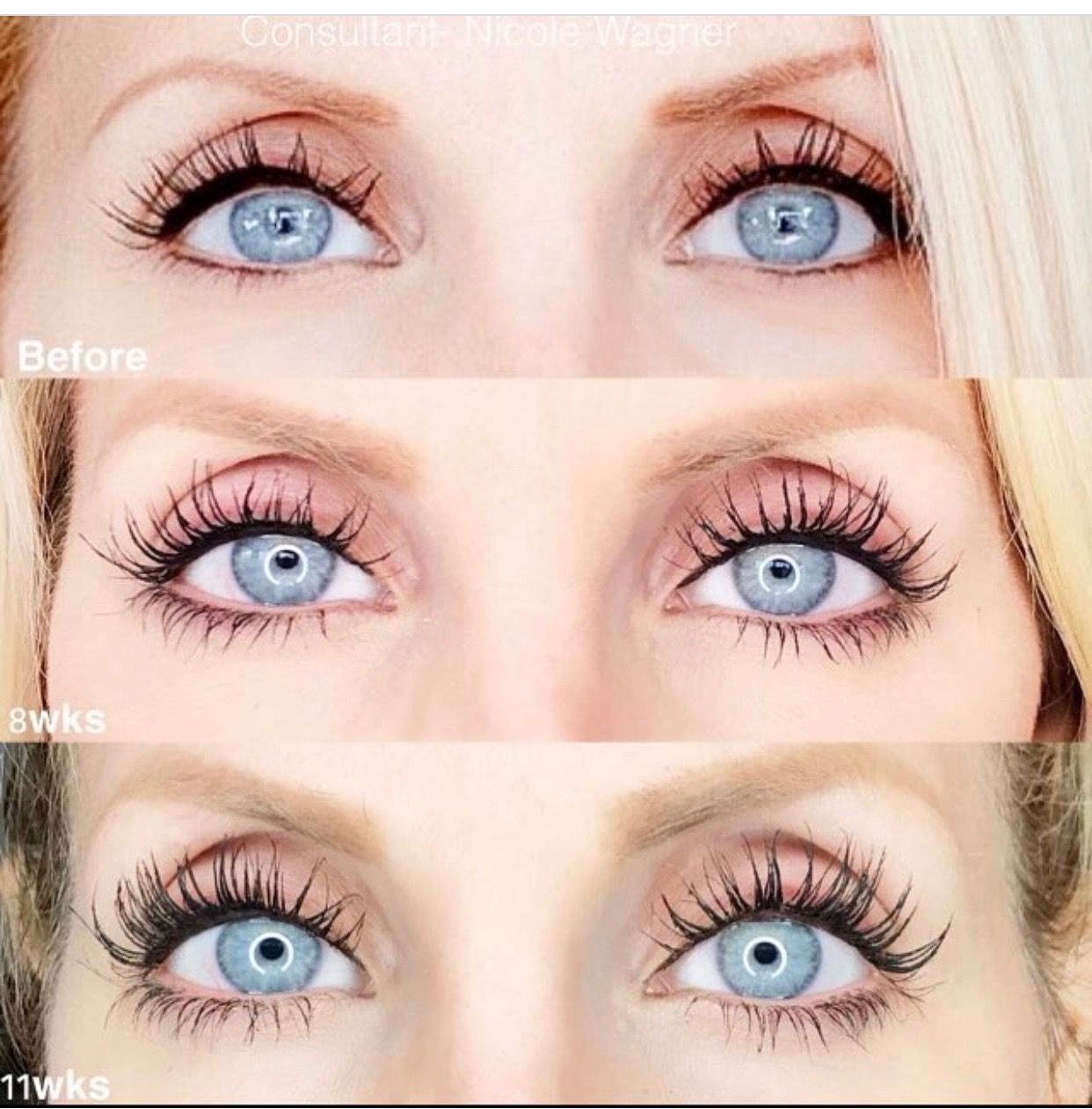 9b203ce8baa Beautiful lashes for Free??? You can have a Free Lash Boost now by becoming  a Preferred Customer with a Regimen order. Offer good through Monday only.