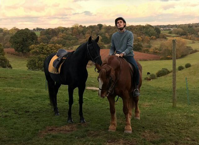horse movies on netflix