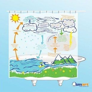 This Self Aware Curtain Will Teach You About The Water Cycle As
