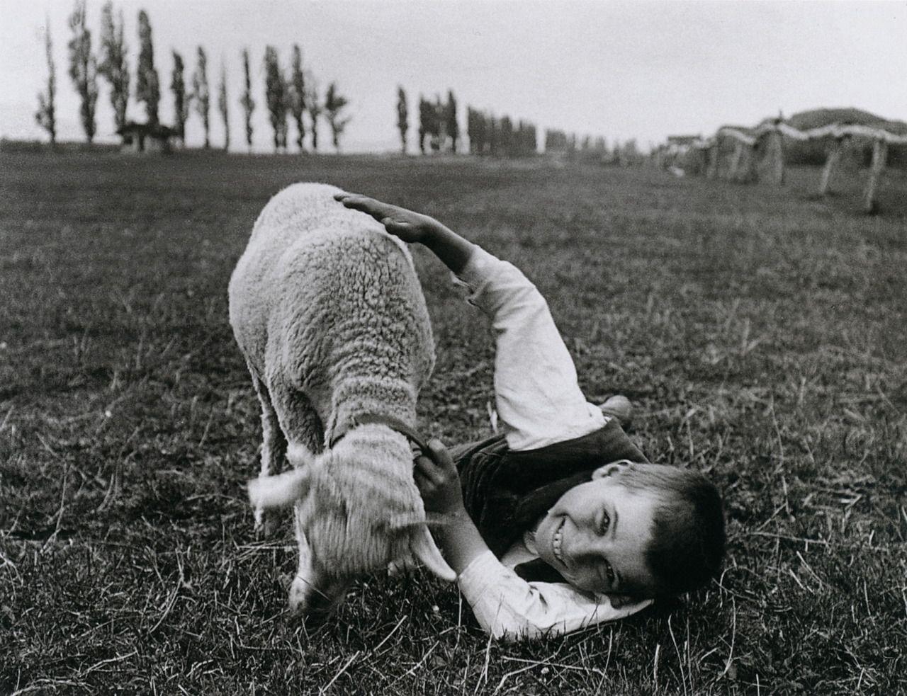 Andre Kertesz Con Immagini Andre Kertesz Fotografia Dei