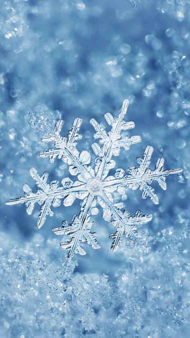 Snowflake Enlarged Iphone Wallpaper Winter Snowflake Wallpaper Winter Wallpaper Cool free winter wallpaper for iphone 7