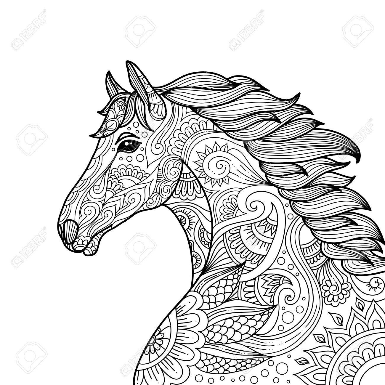 Stylized Hand Drawn Head Horse Coloring Page For Adults Vector Best Of Pages