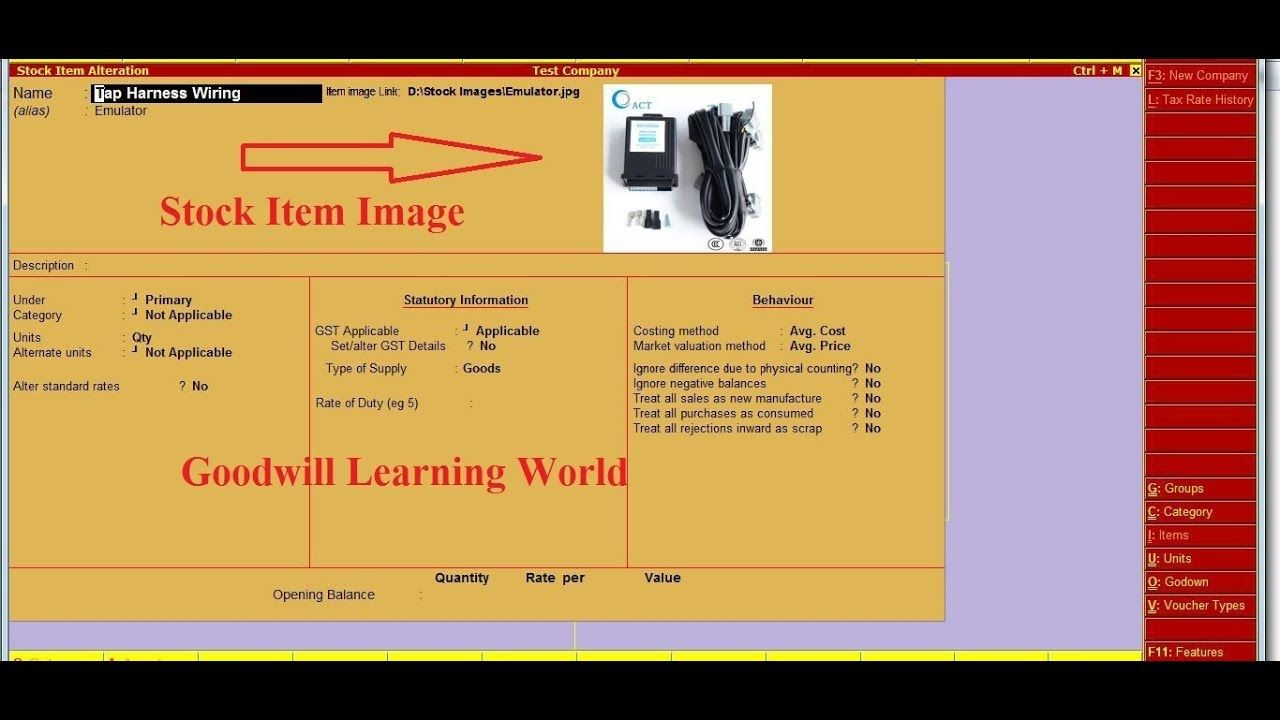 Tally TDL for View Stock Item Image in Inventory Master Tally Add on