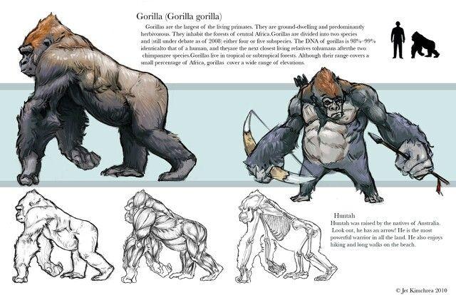 Gorilla | Animation | Pinterest