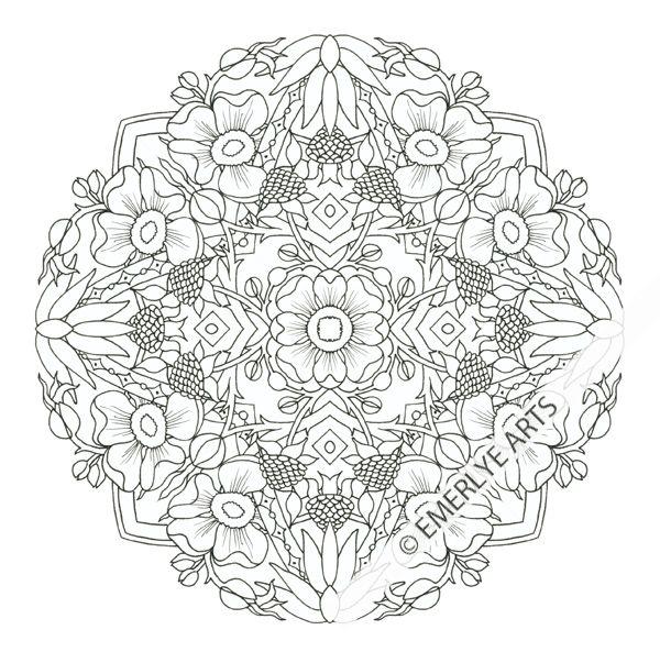 Raspberry Mandala Coloring Page | Узоры, Трафареты, Картинки