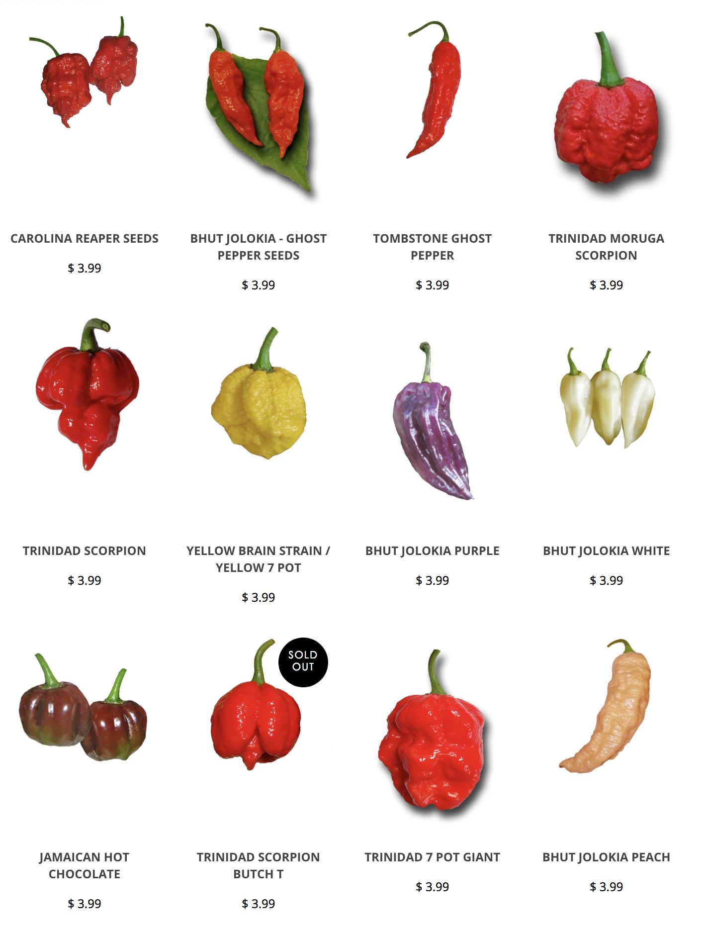 Carolina Reaper Chocolate Hot Pepper Organic 12 Seeds