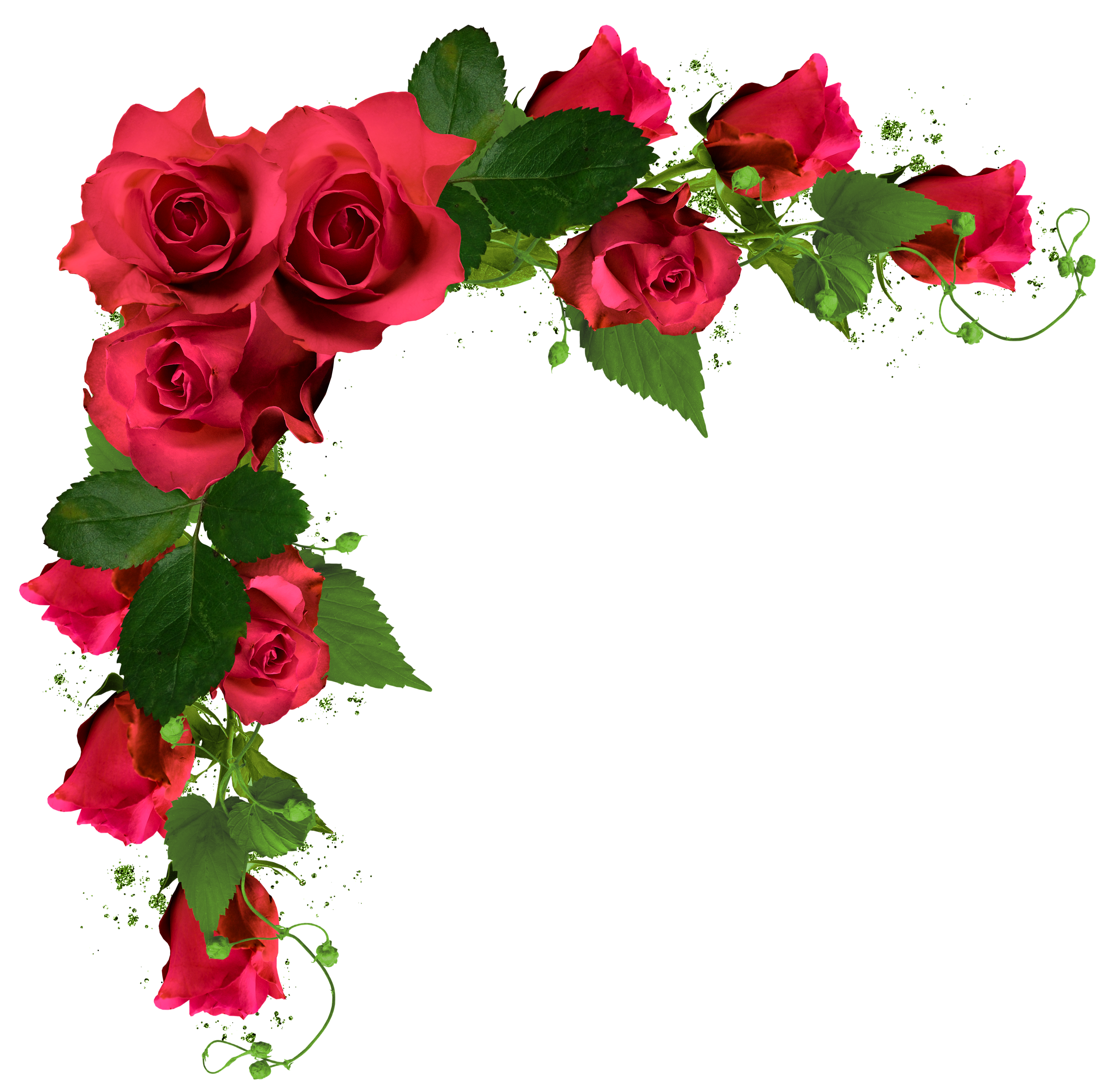 Beautiful Decor with Roses PNG Clipart Picture Flowers