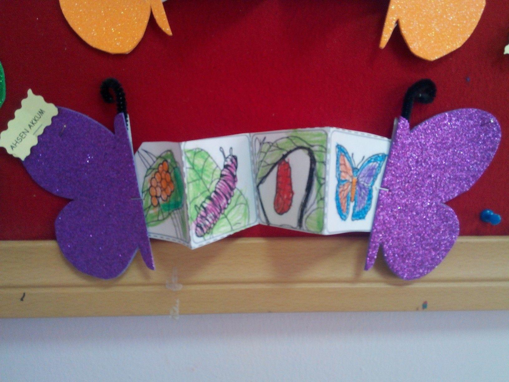 Kelebek Oluşum Evreleri Sanat Etkinliği Sanat Etkinlikleri