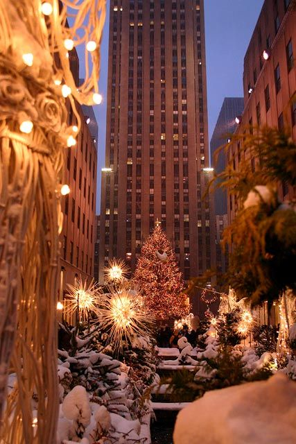 Christmas in NYC, something i would like to say i have seen in person...