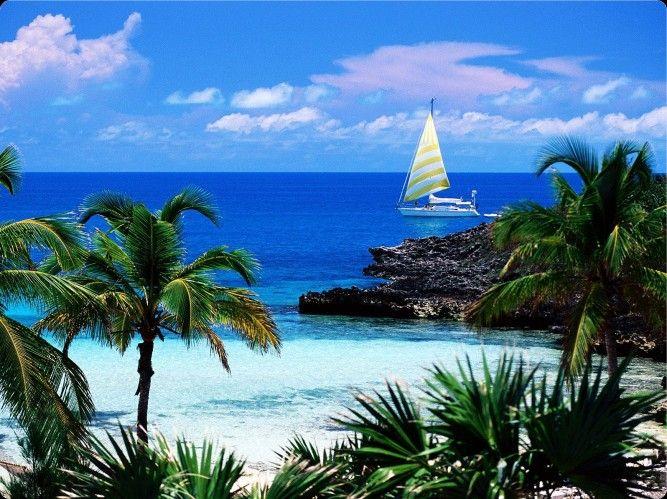 """Sie sehen das Urlaubsbild """"Exuma Cays Land and Sea Park auf Great Exuma, Bahamas"""" http://www.abendsonne.net/fotografie/198/karibik/exuma-cays-land-and-sea-park-auf-great-exuma-bahamas"""