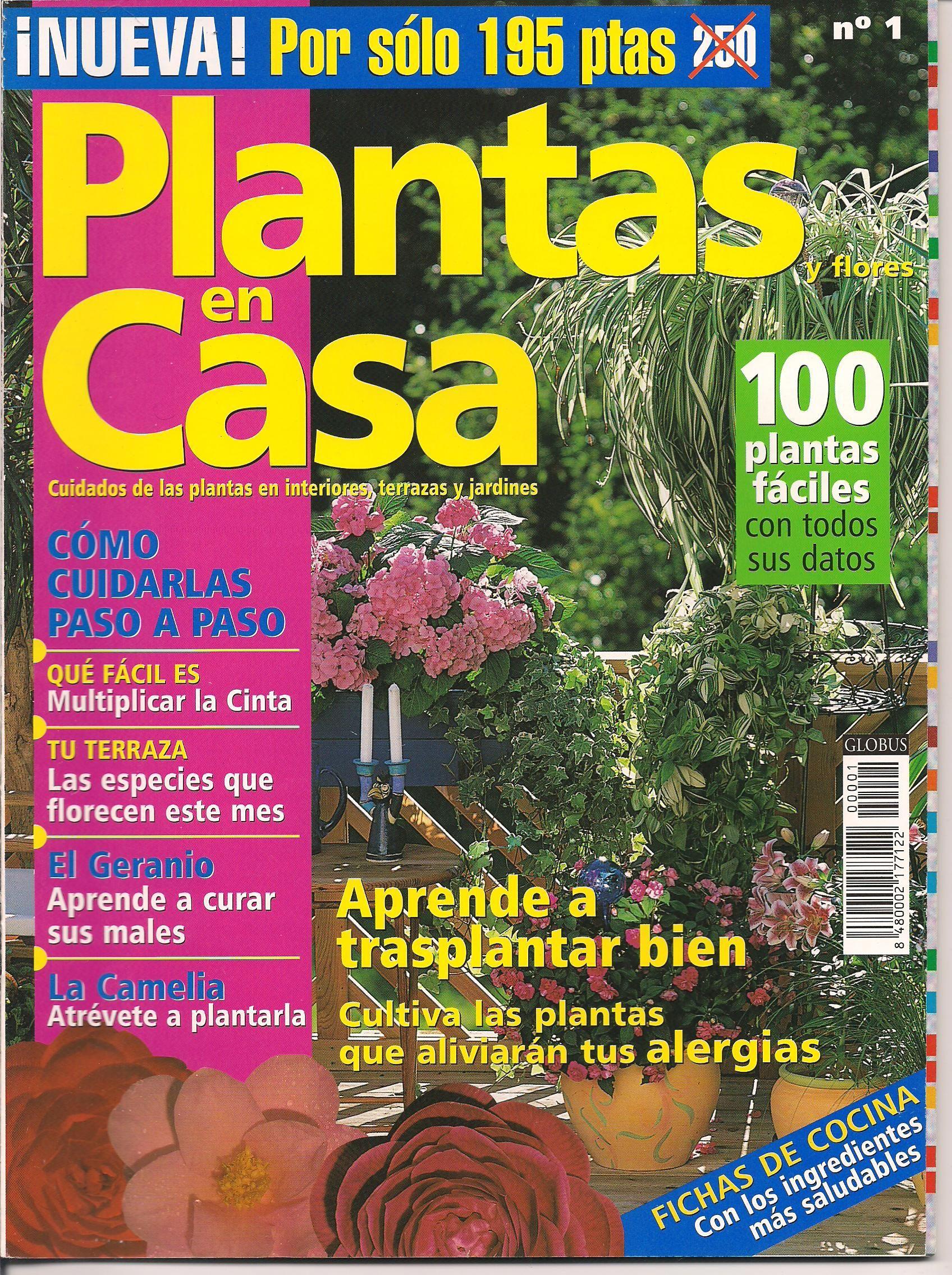 Año 2.000 Plantas facilisimo, Geranios, Florecer