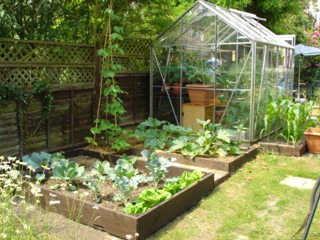 vegetable gardens for small yards | Vegetable Garden Ideas ...