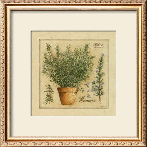 Herbes de Provence, Romarin Framed Art Print  #DWRdining
