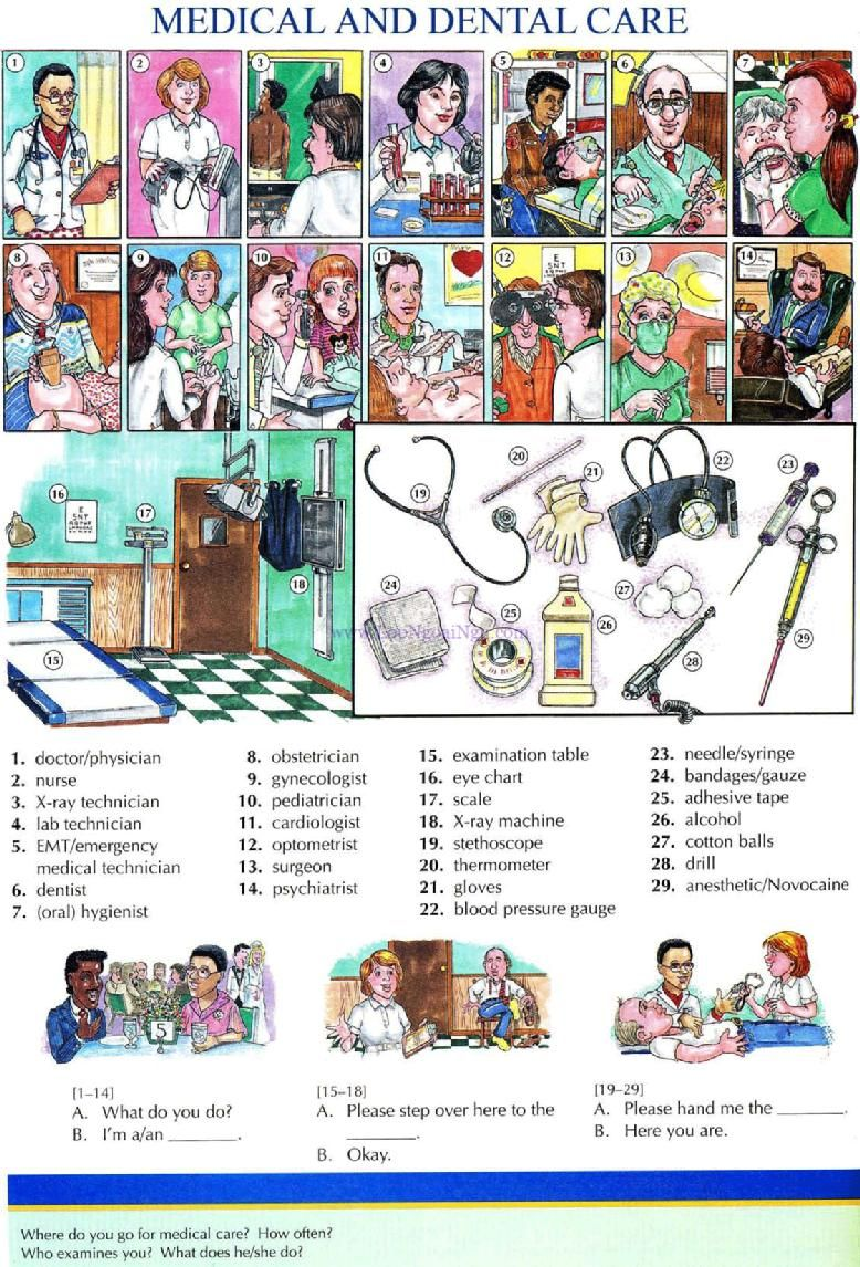 68 Medical And Dental Care Pictures Dictionary English Study