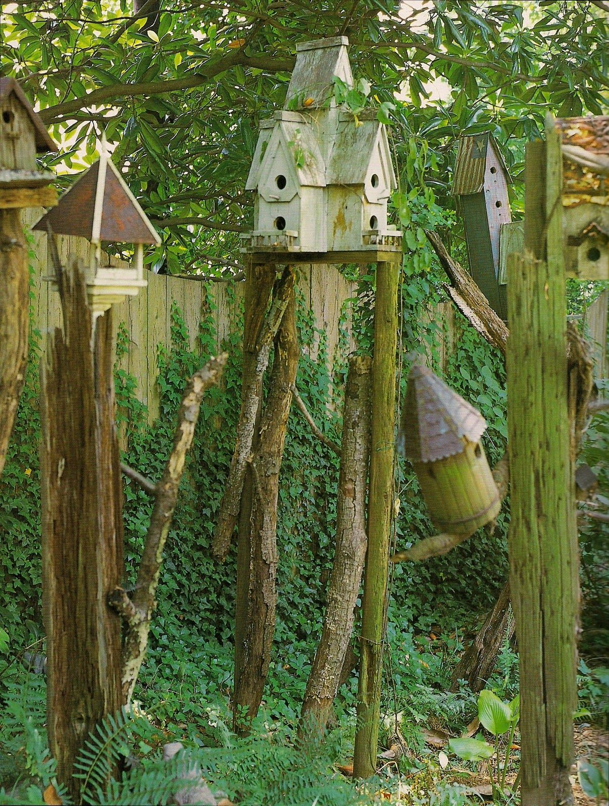Bird houses on old poles, branches, fence posts~~~~~<3