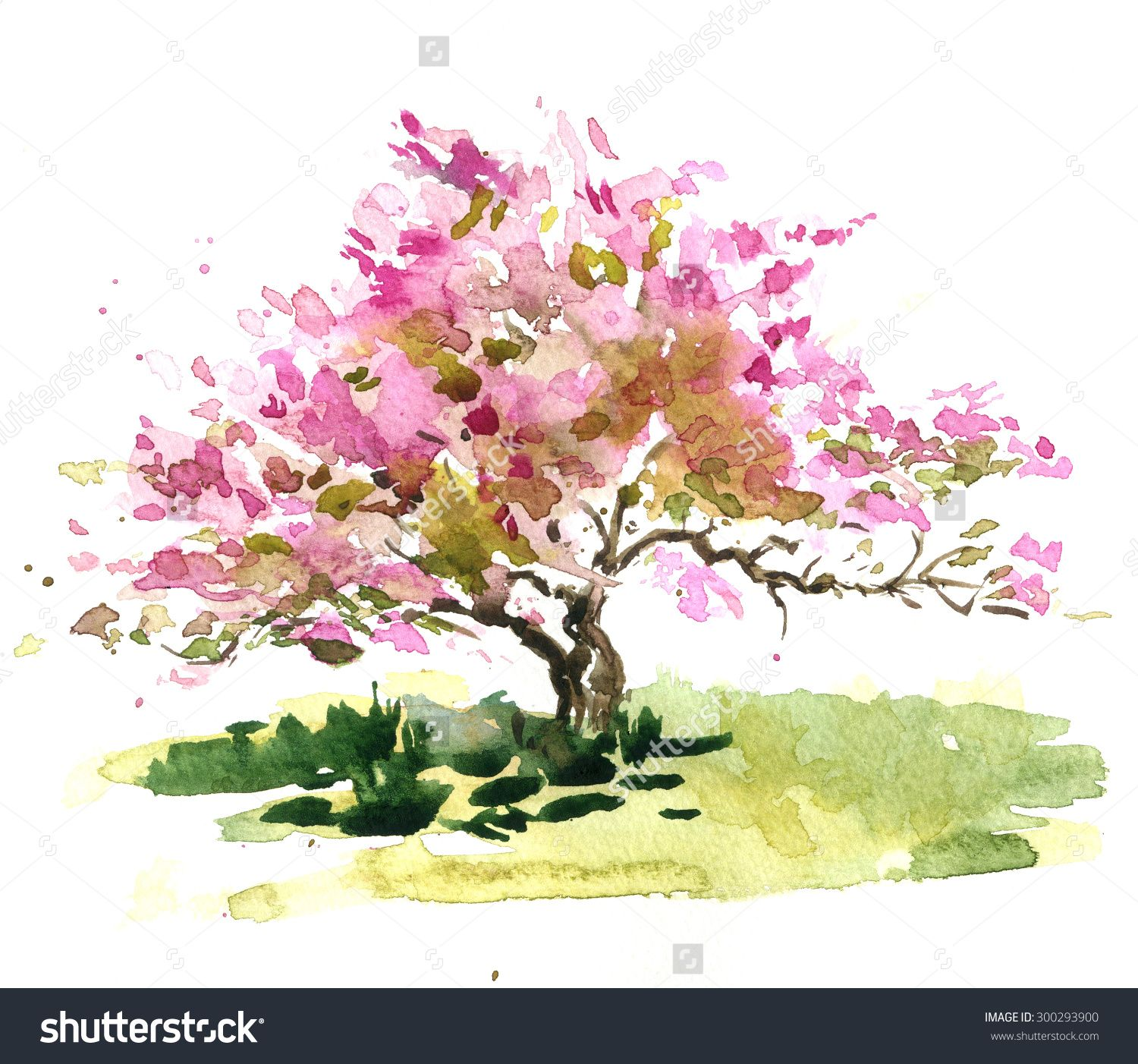 Captivating Image Result For How To Watercolor A Blooming Tree. Japanese Garden Cherry  Blossom Paintings