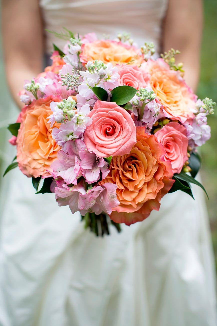 Ecofriendly Banff Wedding Free spirit rose, Flower