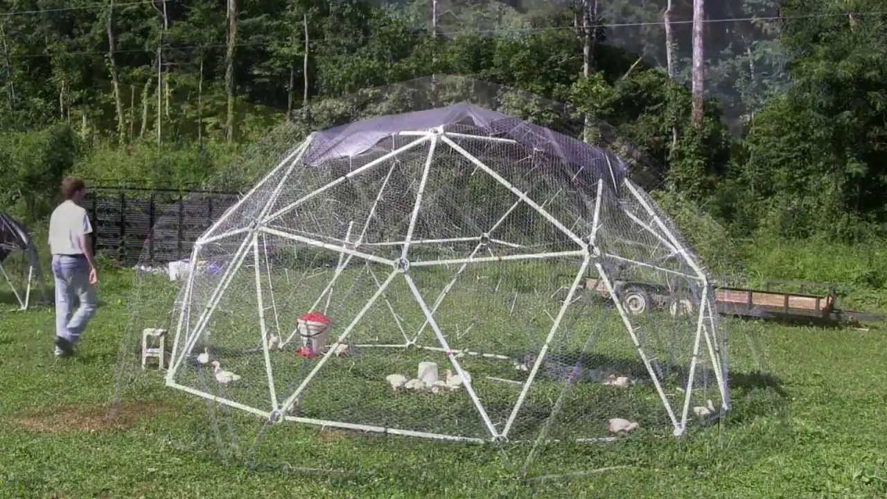 building a geodesic chicken coop for pastured poultry gardening