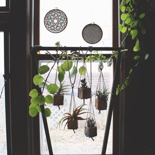Charmant Small Square Pot Hanging Window Garden By StarMeKitten