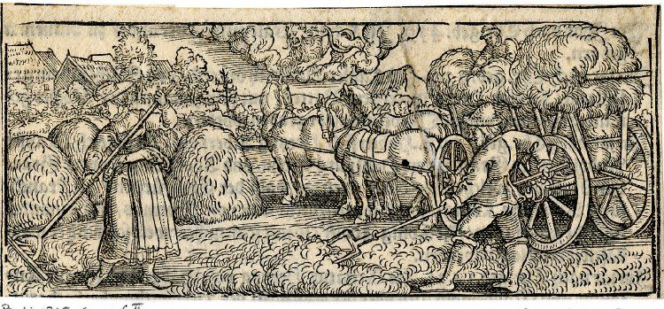 July; loosely copied after Sebald Beham; peasants making hay in a field; at upper centre a lion representing Leo; illustration to Michael Beuther, 'Calendarium Historicum', Frankfurt: David Zephelius, 1557.  1557 Woodcut