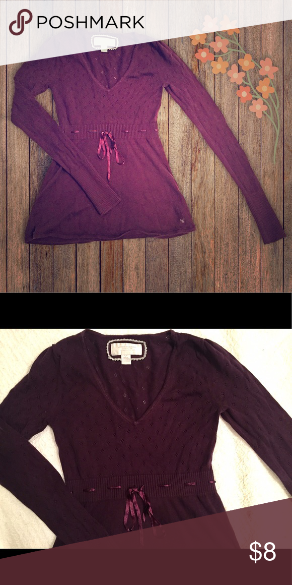 American Eagle sweater American Eagle sweater with tiny cutout detail and ribbon. It's a plum color with a little more red than purple, but not burgundy. American Eagle Outfitters Sweaters V-Necks