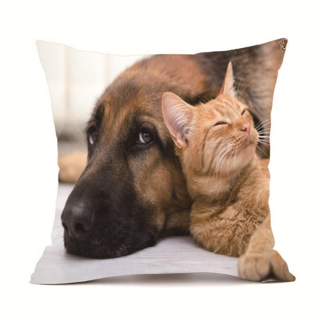 Excellent Zyooh Cute Cat And Dog Pillow Covers Sofa Car Chair Decor Bralicious Painted Fabric Chair Ideas Braliciousco