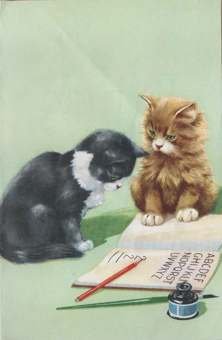 4 Holly Webb Kitten Books Guided Level O P Rl 2 3 Smudge Ginger Smudging Chapter Books Kitten