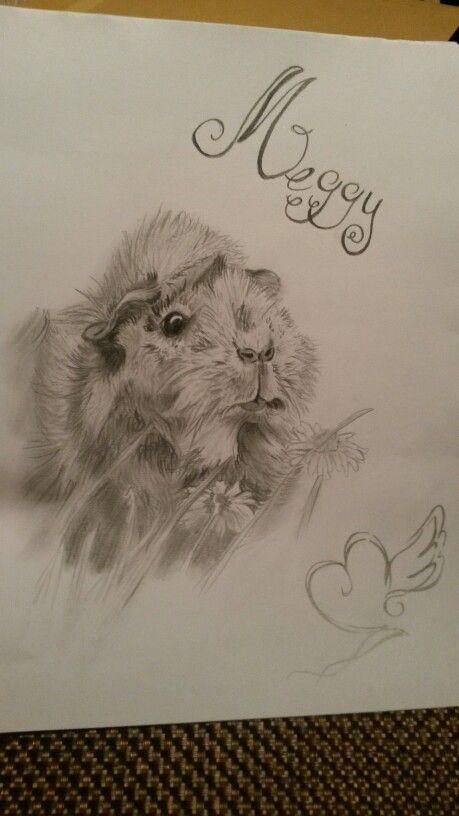 Drawing guinea pigs | Fussel | Pinterest | Meerschweinchen ...