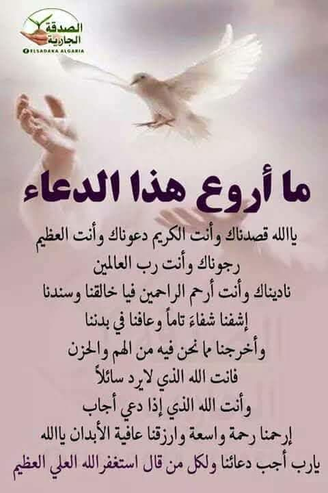 Pin By Mohamed El Abbbachi On Islam Quran Quotes Love Islam Facts Islamic Love Quotes