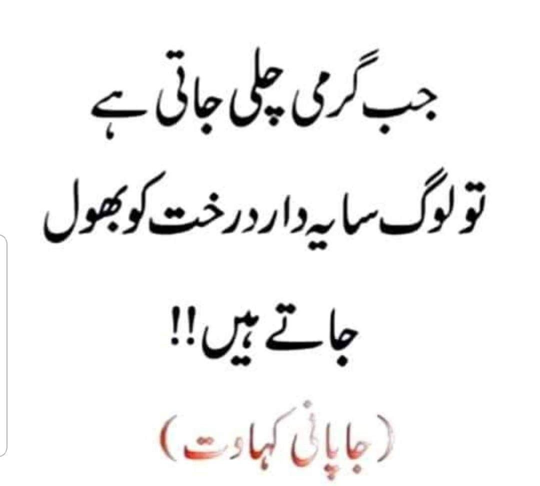 True Lines Quotes Deep Feelings Words Quotes Deep Words