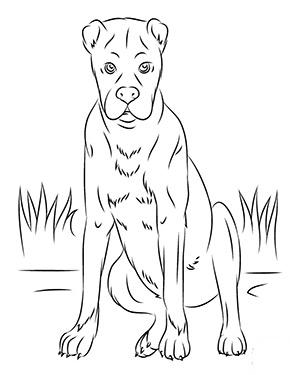 Ausmalbild Sitzender Boxer Ausmalbilder Hunde Hund Zeichnen Ausmalbilder Tiere