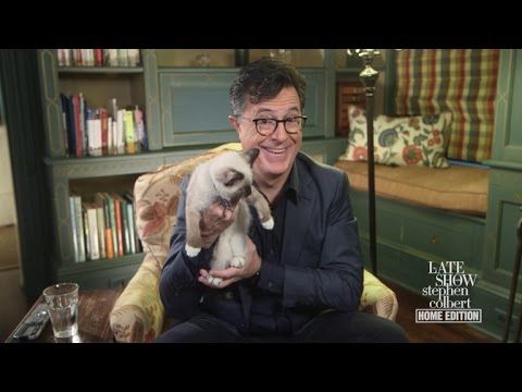 Stephen Responds To The Second Presidential Debate, From Home - YouTube