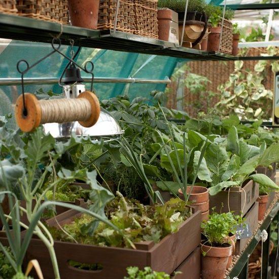 January gardening ideas | Pinterest | Garden photos, Gardens and ...