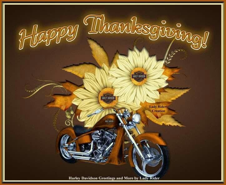 Happy Thanksgiving | Harley davidson quotes, Harley ...